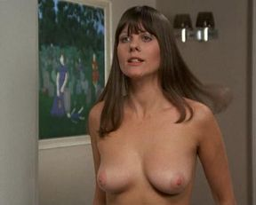 Linda Hayden nude, Ava Cadell nude – Confessions of a Window Cleaner (1974)